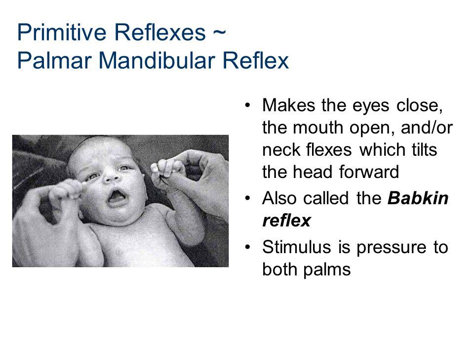 Primitive Reflexes ~ Palmar Mandibular Reflex