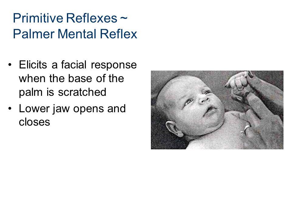 Primitive Reflexes ~ Palmer Mental Reflex