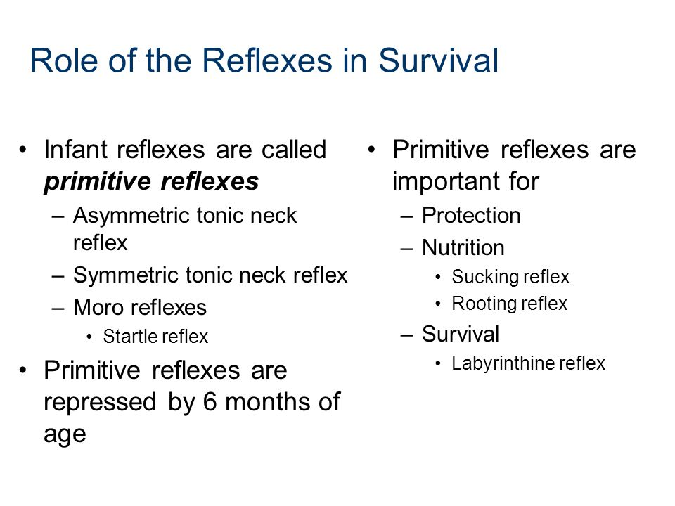 Role of the Reflexes in Survival