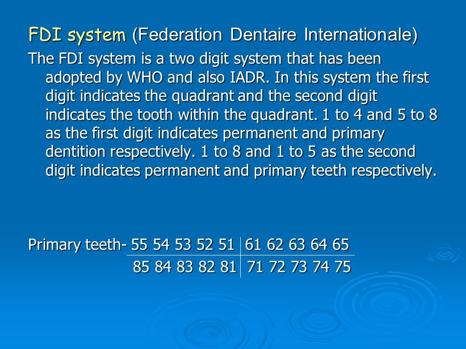 FDI system (Federation Dentaire Internationale)
