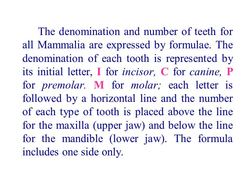 The denomination and number of teeth for all Mammalia are expressed by formulae.