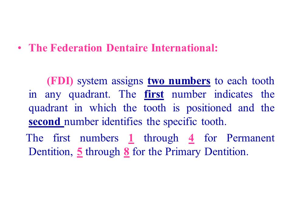 The Federation Dentaire International: