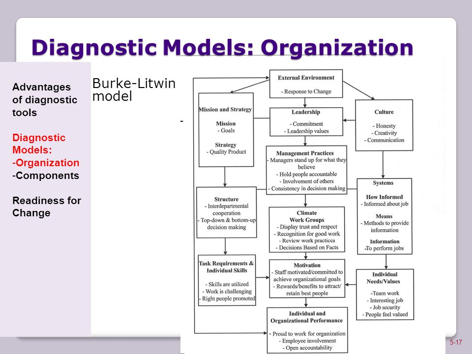 Diagnostic Models: Organization
