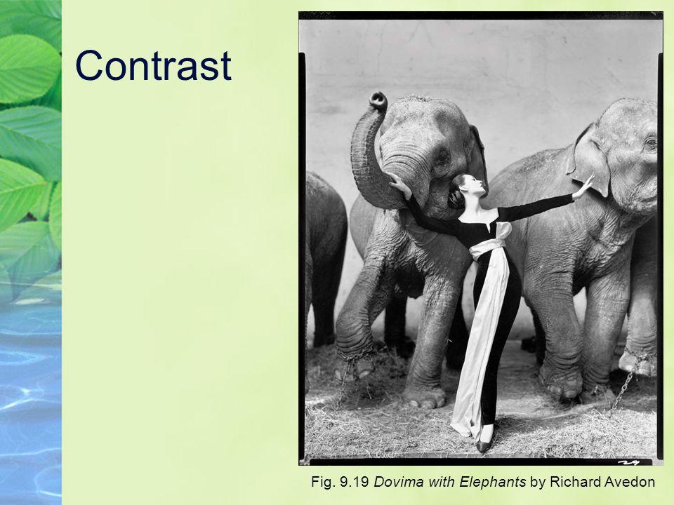 Contrast Fig. 9.19 Dovima with Elephants by Richard Avedon