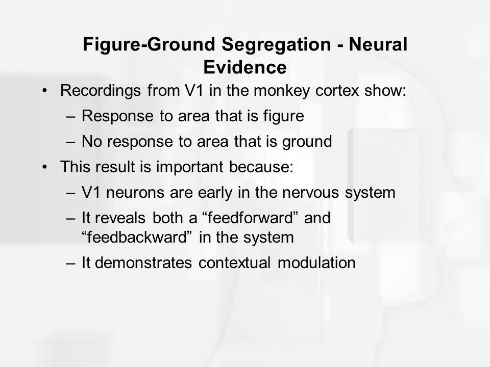 Figure-Ground Segregation - Neural Evidence