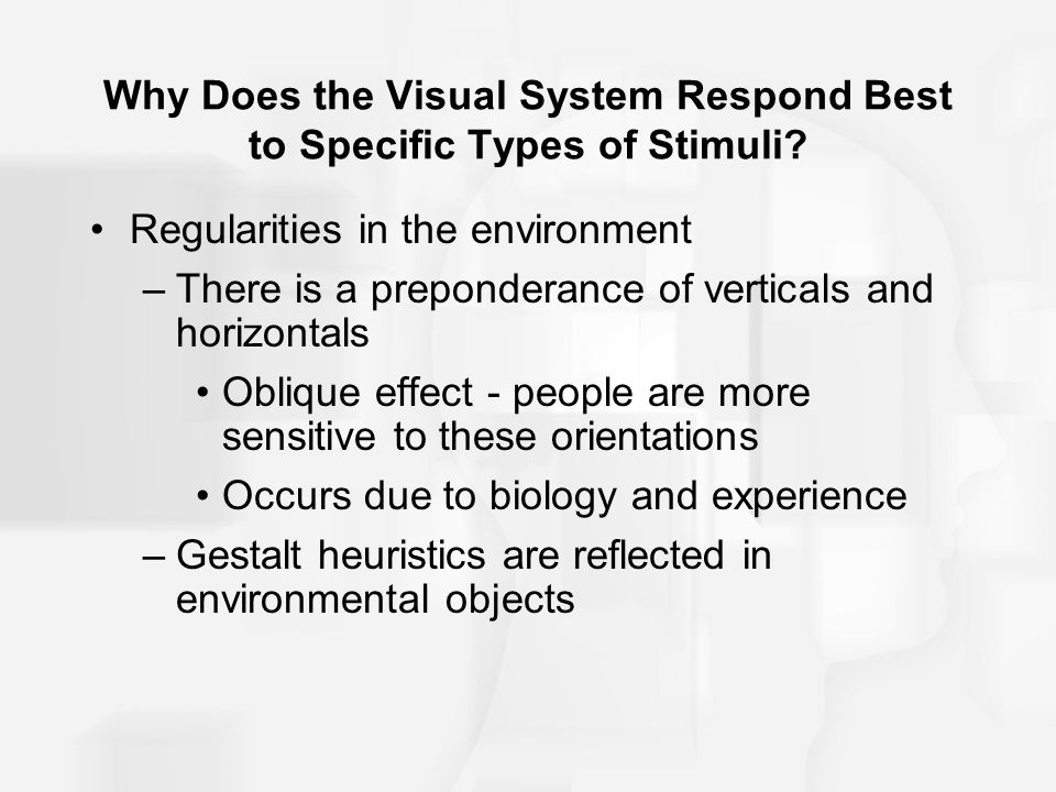 Why Does the Visual System Respond Best to Specific Types of Stimuli