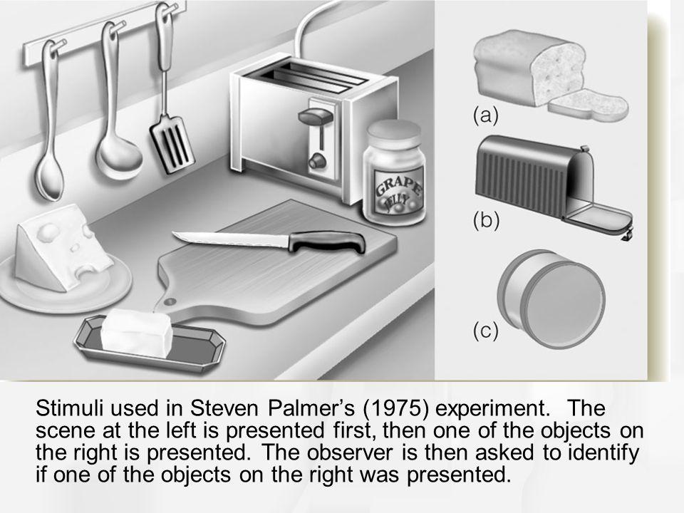 Stimuli used in Steven Palmer's (1975) experiment