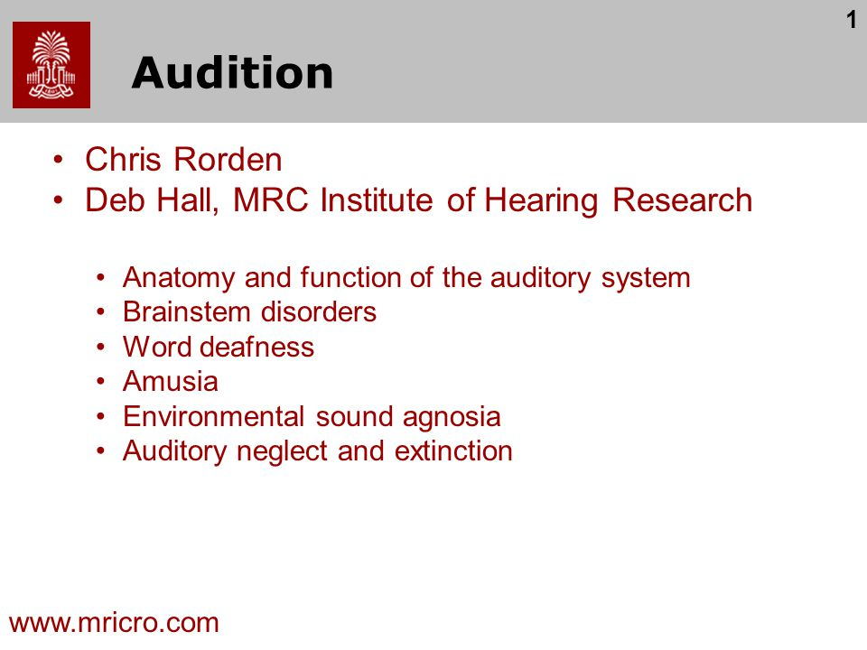 Audition Chris Rorden Deb Hall, MRC Institute of Hearing Research