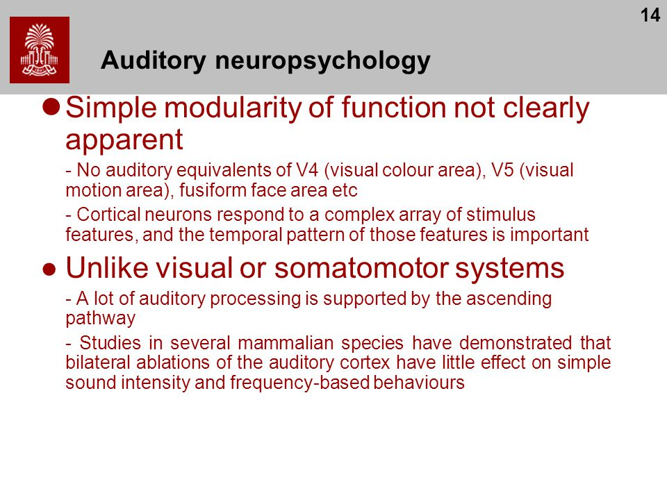 Auditory neuropsychology