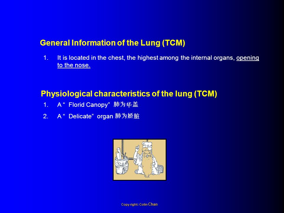 General Information of the Lung (TCM)