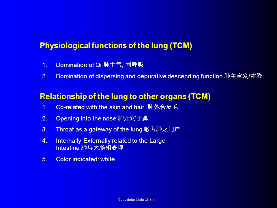 Physiological functions of the lung (TCM)