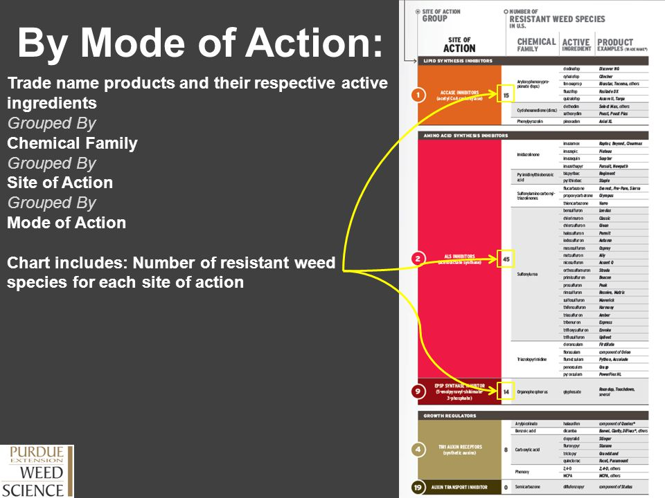 By Mode of Action: Trade name products and their respective active ingredients. Grouped By. Chemical Family.