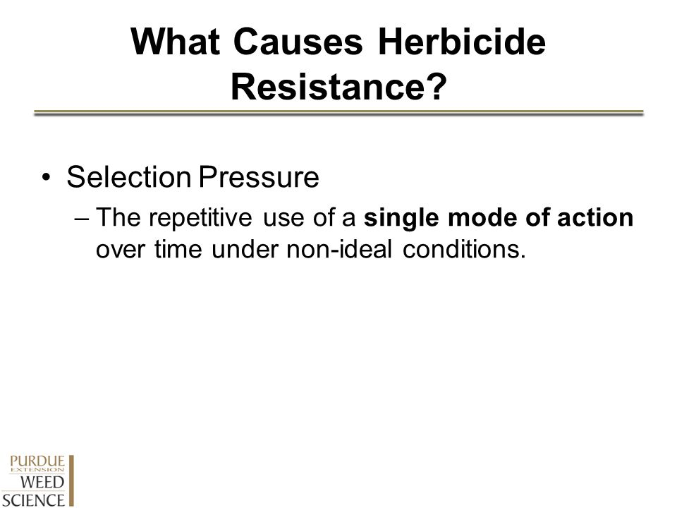 What Causes Herbicide Resistance