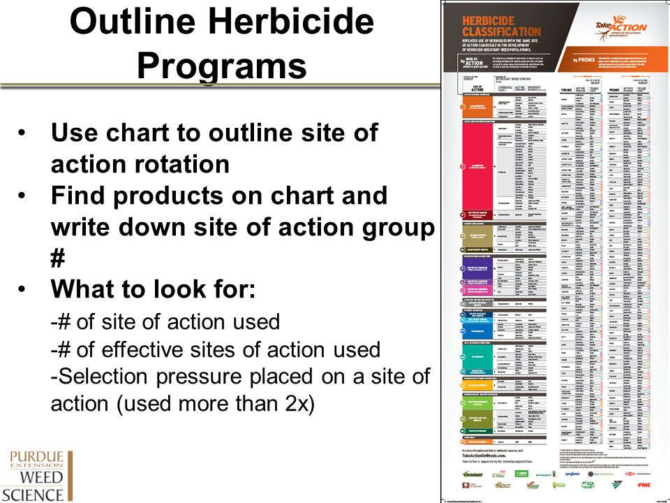 Outline Herbicide Programs
