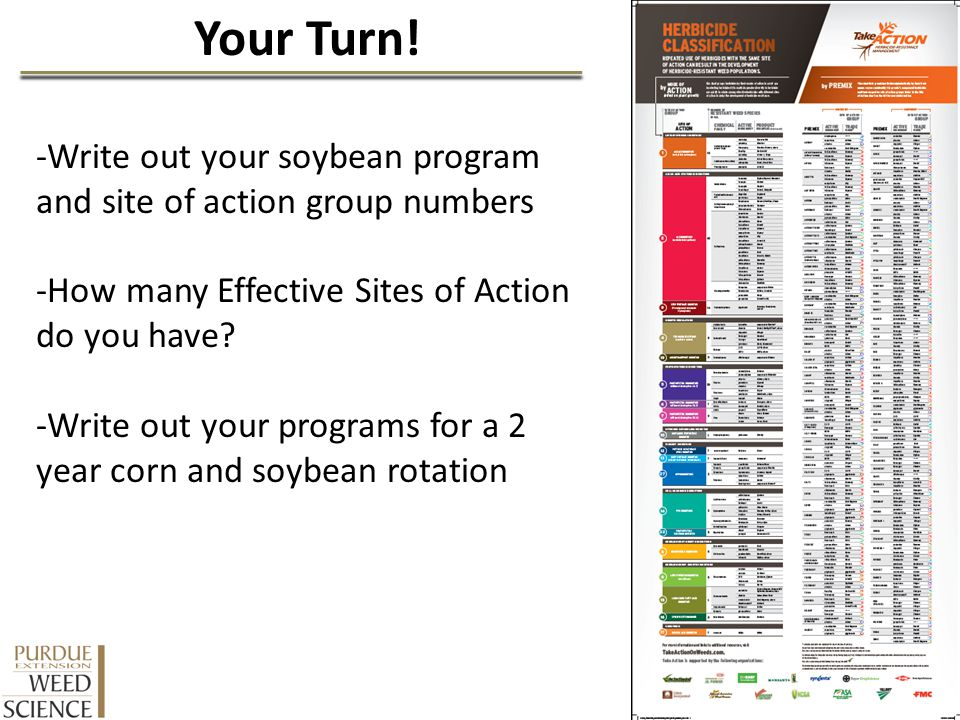 Your Turn! -Write out your soybean program and site of action group numbers. -How many Effective Sites of Action do you have