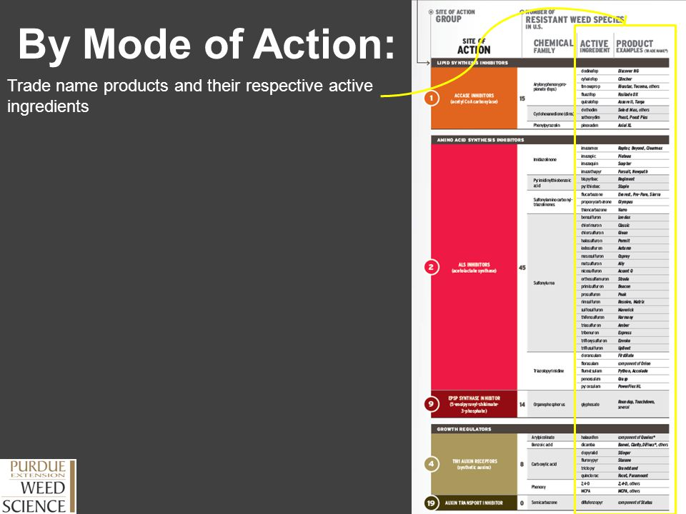 By Mode of Action: Trade name products and their respective active ingredients.