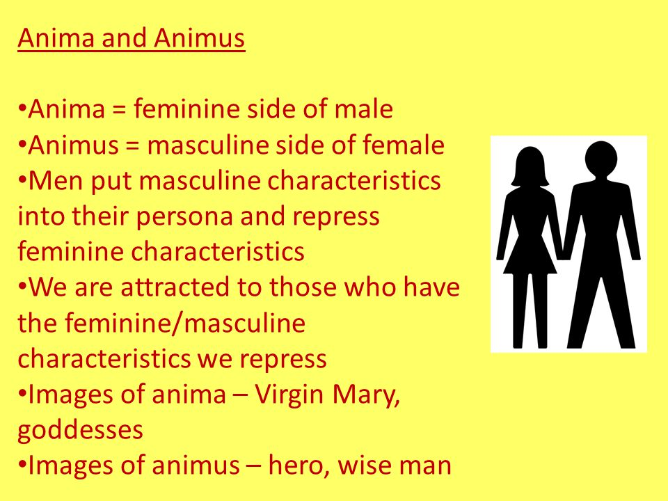 Anima and Animus Anima = feminine side of male. Animus = masculine side of female.