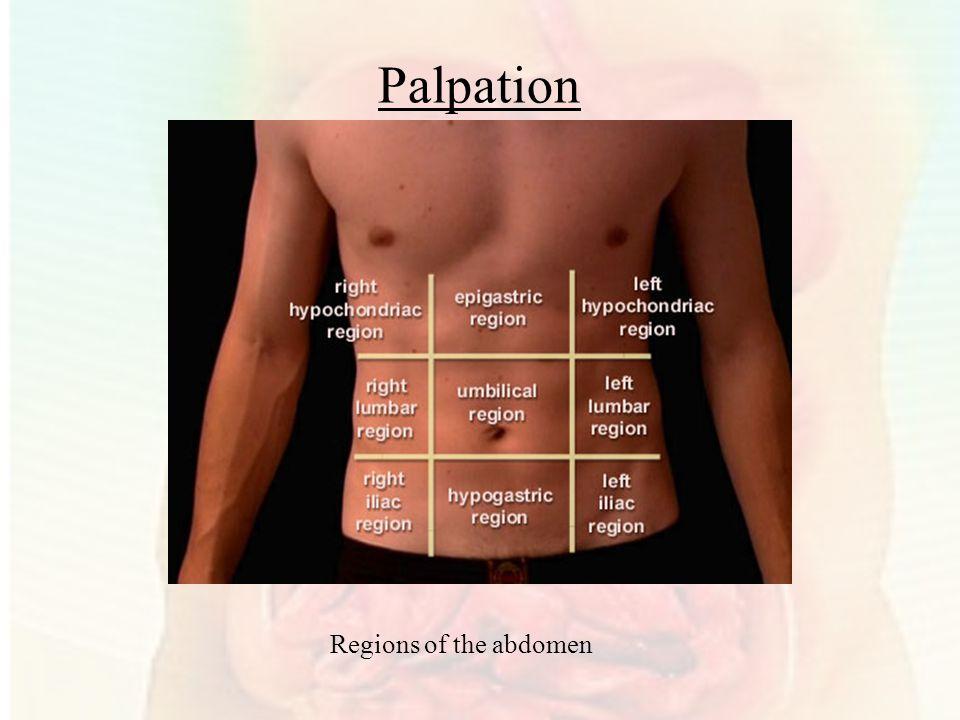 Palpation Regions of the abdomen