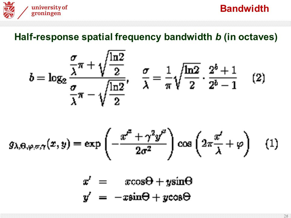 Half-response spatial frequency bandwidth b (in octaves)