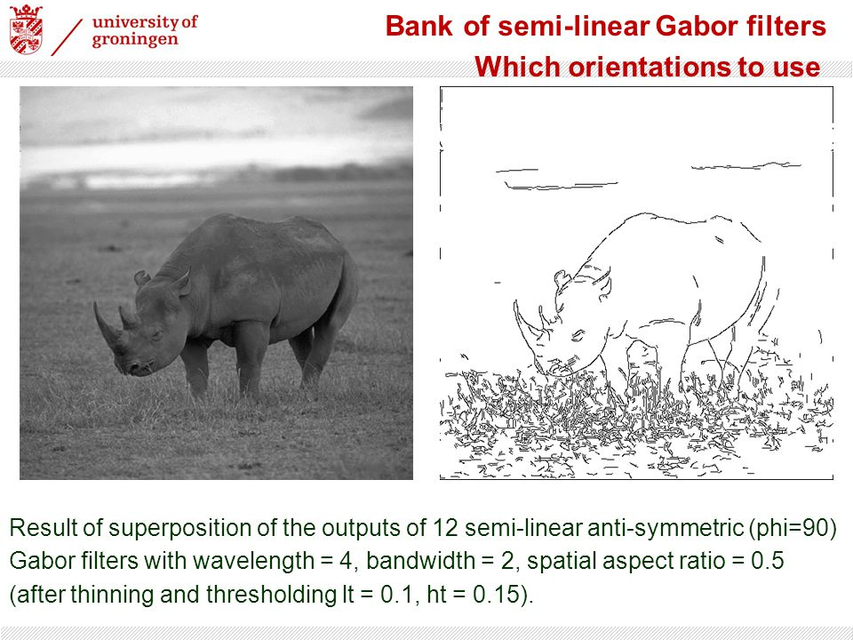 Bank of semi-linear Gabor filters Which orientations to use