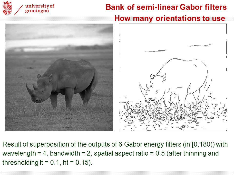 Bank of semi-linear Gabor filters How many orientations to use