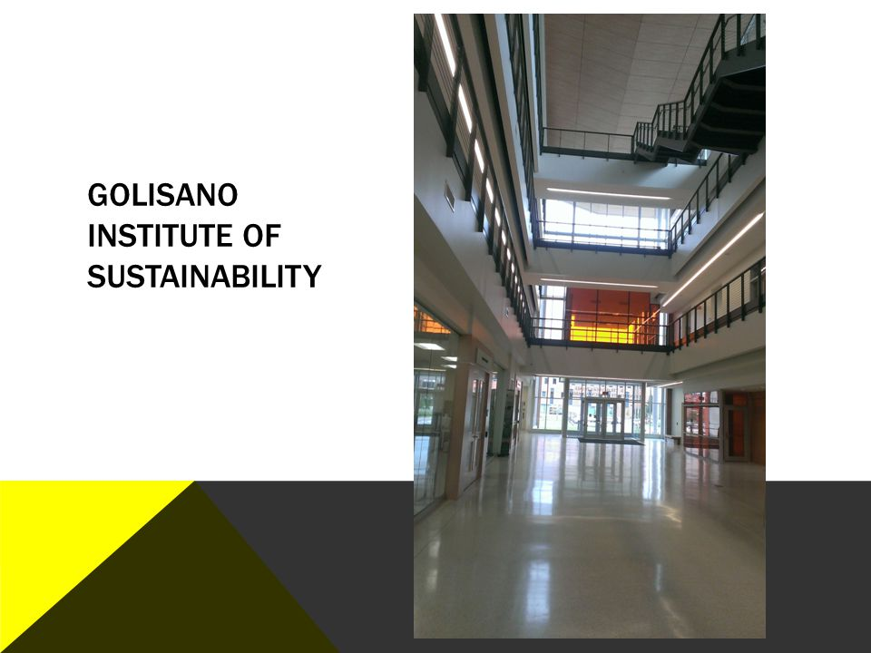 Golisano Institute of Sustainability
