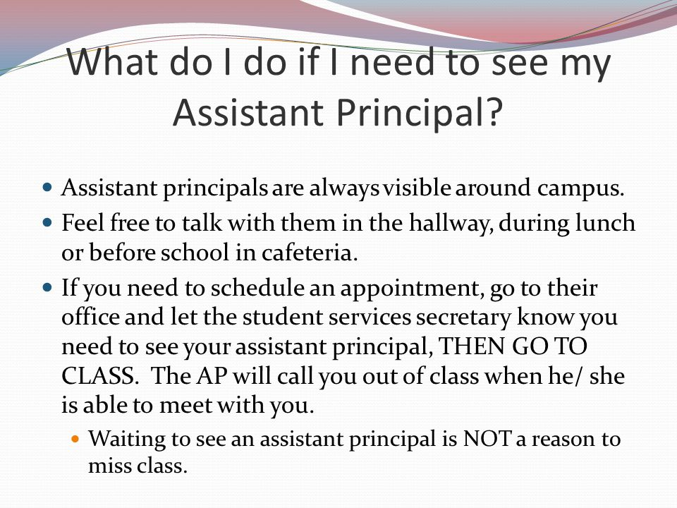What do I do if I need to see my Assistant Principal