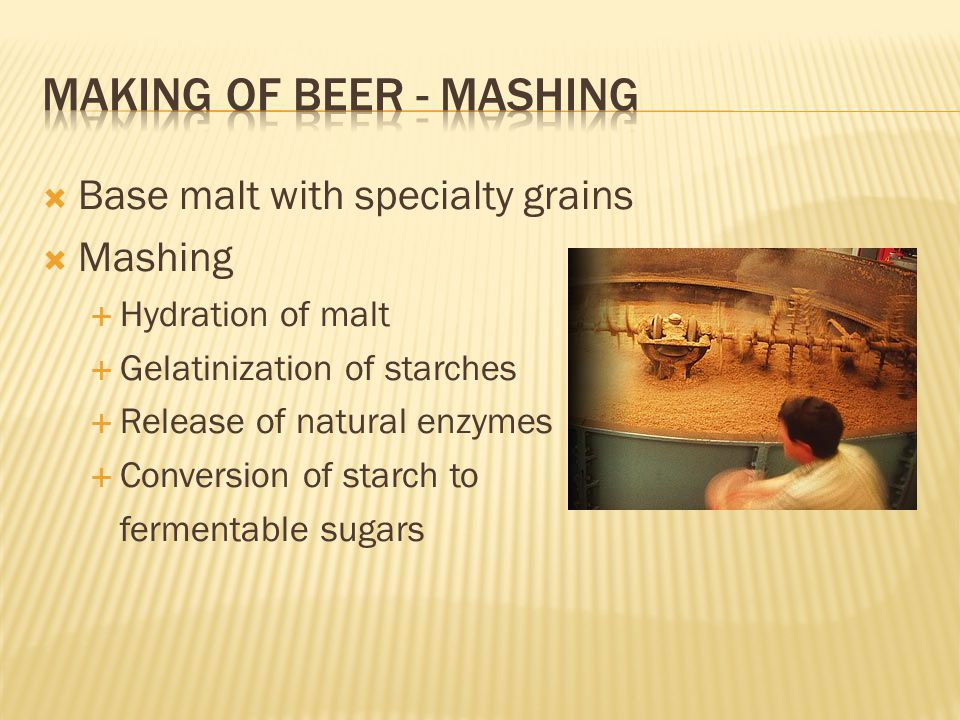 Making of beer - mashing