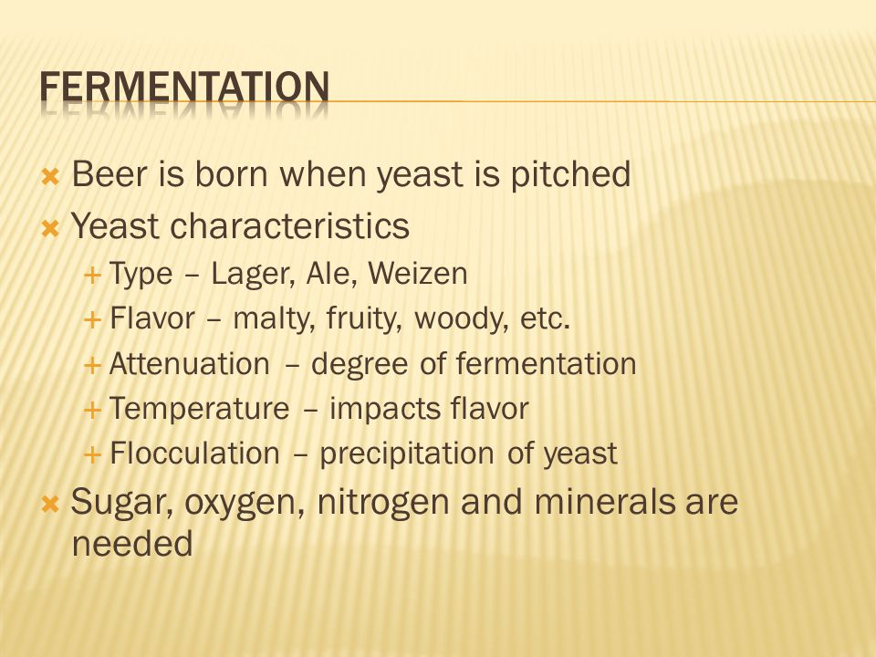 fermentation Beer is born when yeast is pitched Yeast characteristics
