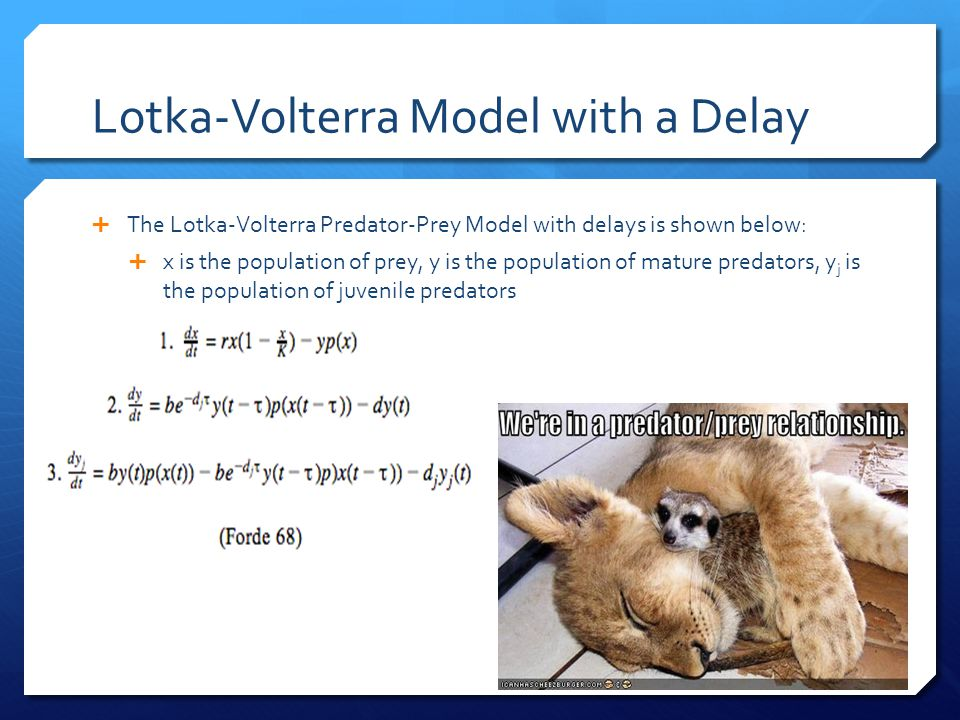 Lotka-Volterra Model with a Delay