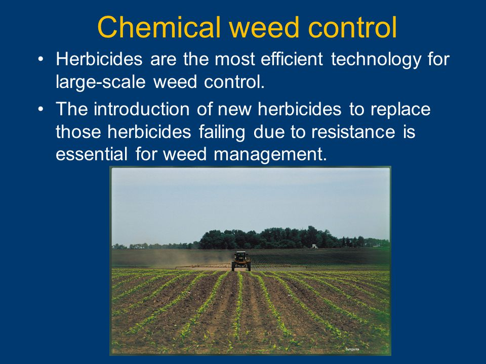 Chemical weed control Herbicides are the most efficient technology for large-scale weed control.