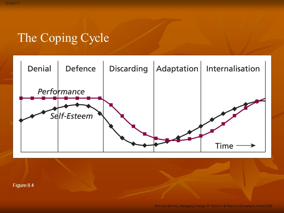 The Coping Cycle Figure 8.4