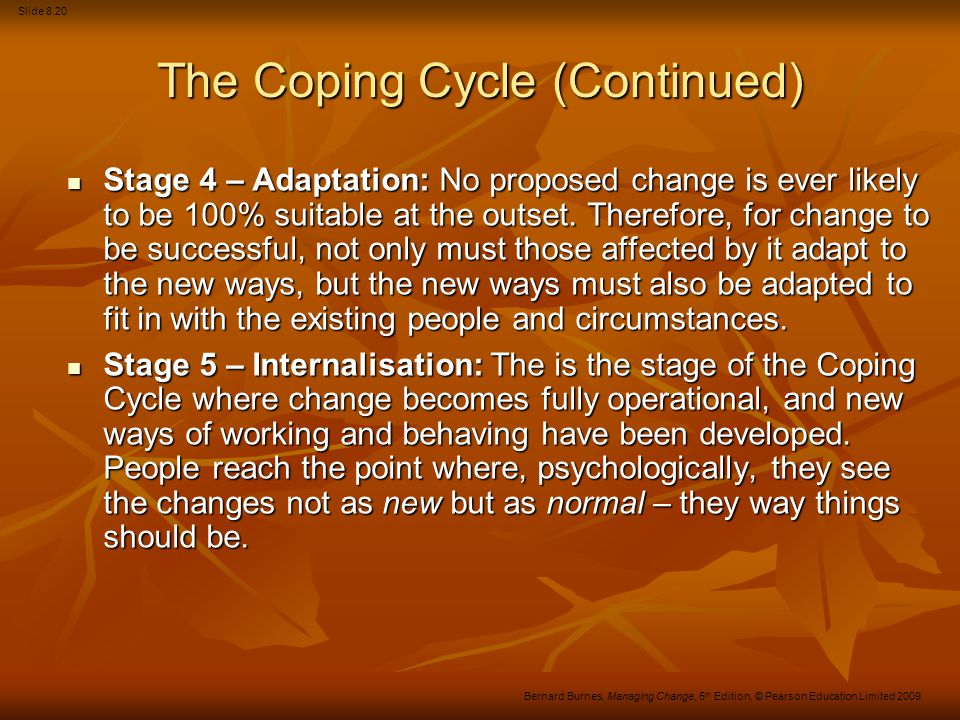 The Coping Cycle (Continued)