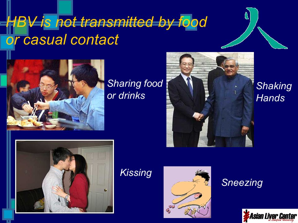 HBV is not transmitted by food or casual contact