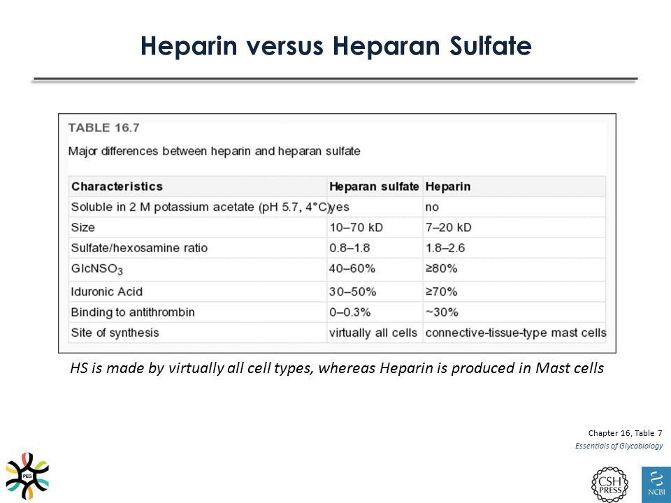 Heparin versus Heparan Sulfate