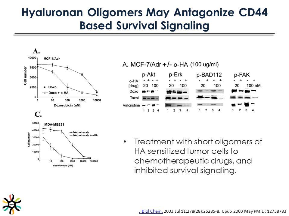 Hyaluronan Oligomers May Antagonize CD44 Based Survival Signaling
