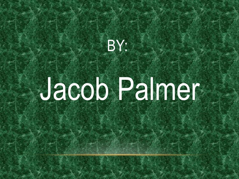 BY: Jacob Palmer