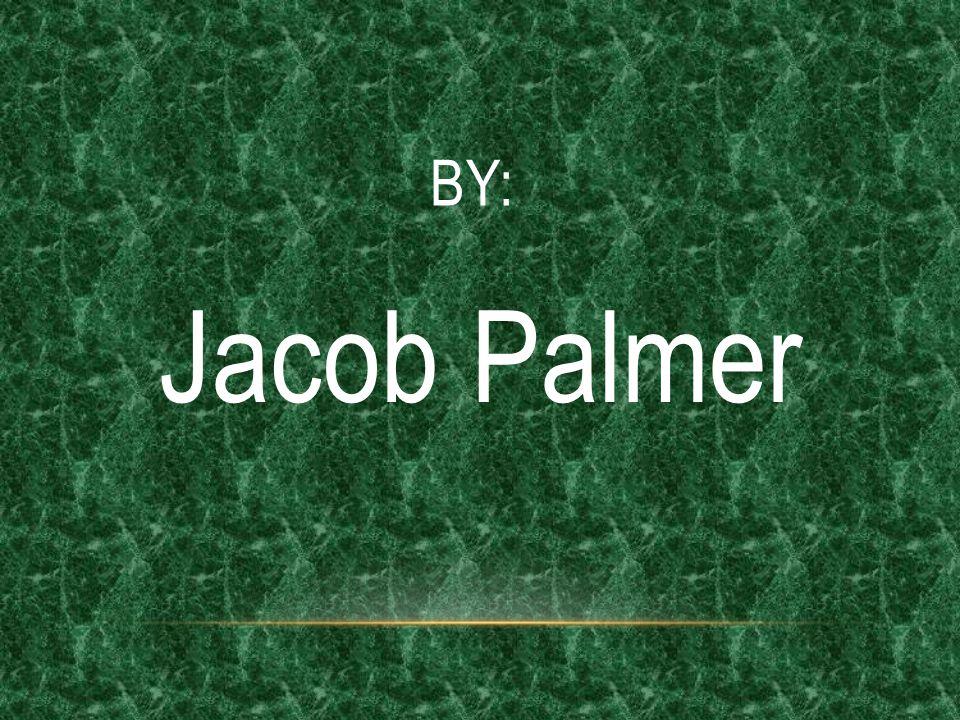 BY: Jacob Palmer