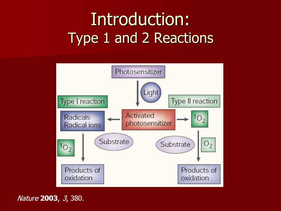 Introduction: Type 1 and 2 Reactions