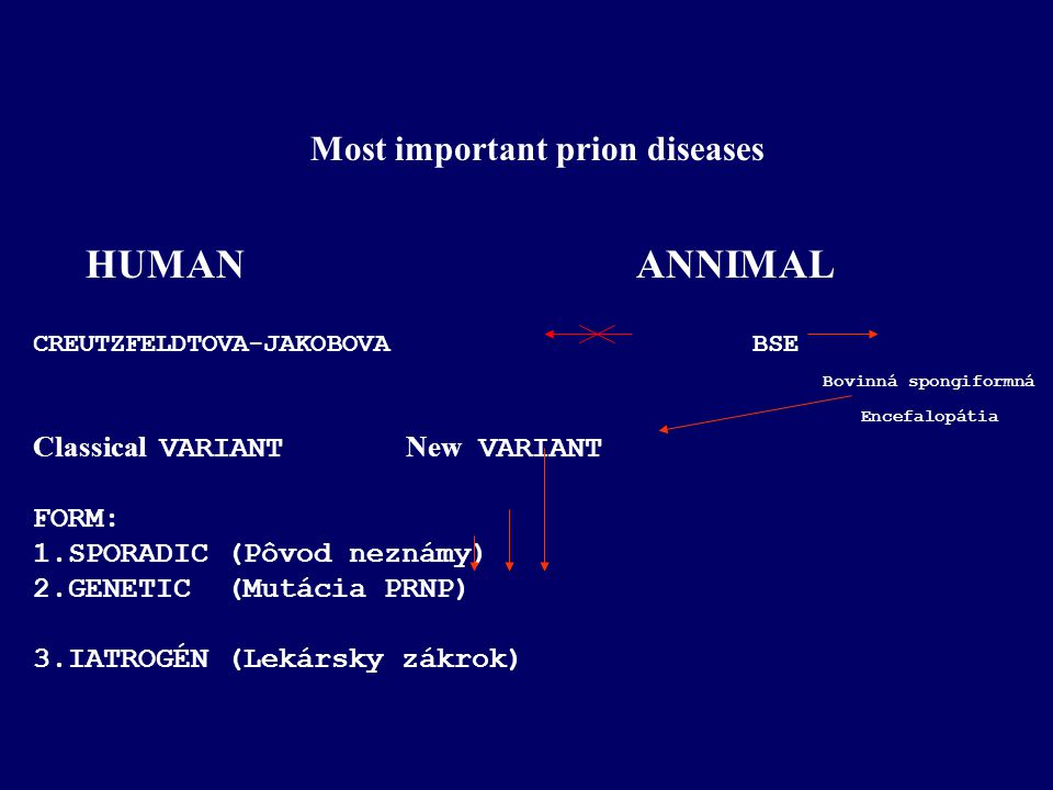 Most important prion diseases