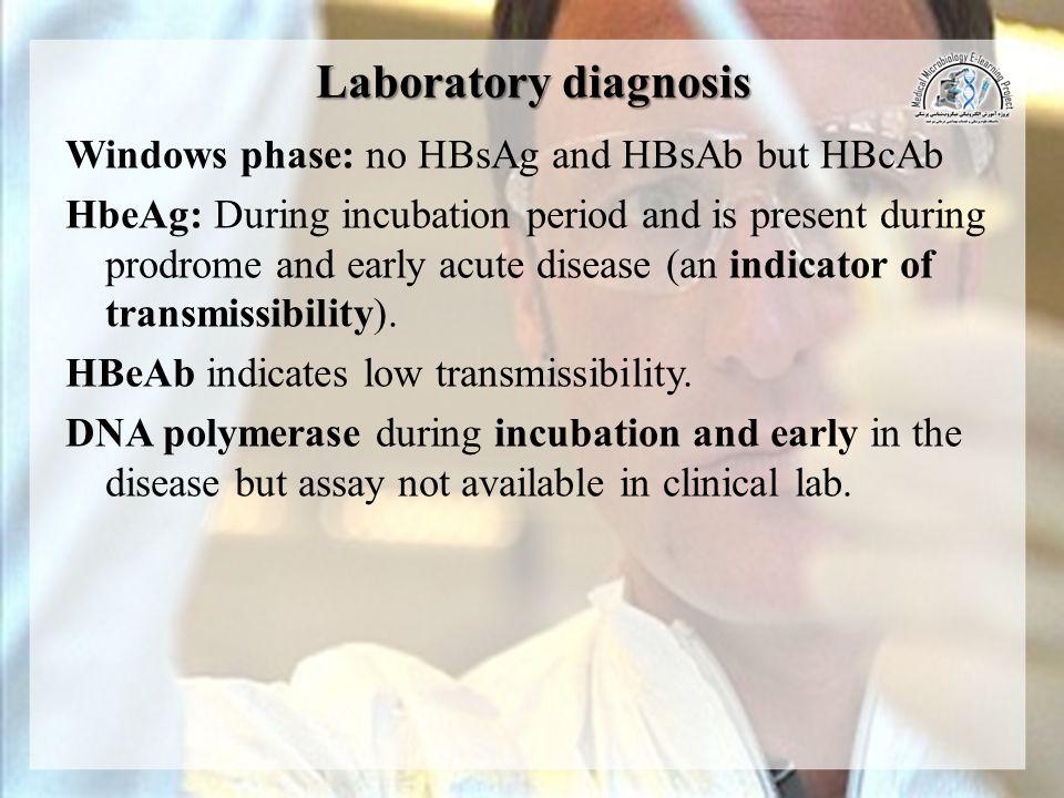 Laboratory diagnosis Windows phase: no HBsAg and HBsAb but HBcAb