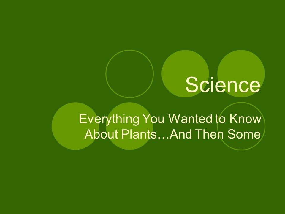 Everything You Wanted to Know About Plants…And Then Some