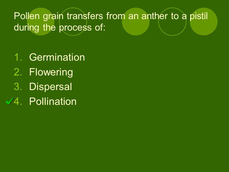 Germination Flowering Dispersal Pollination