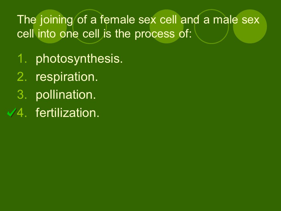 photosynthesis. respiration. pollination. fertilization.