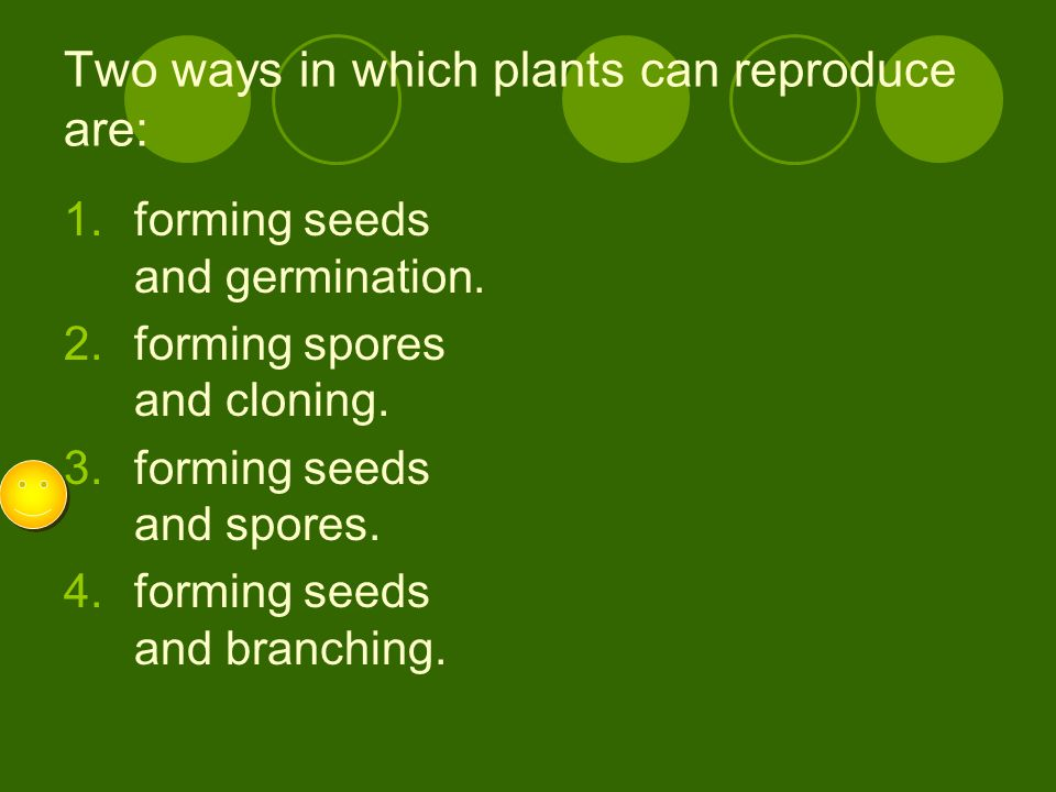 Two ways in which plants can reproduce are: