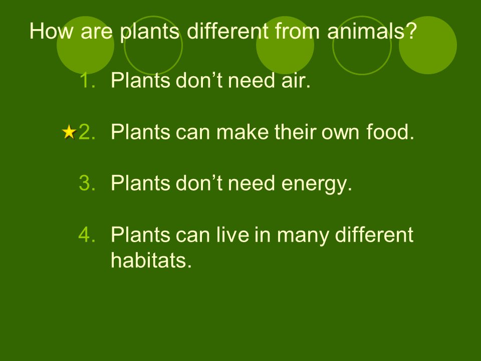 How are plants different from animals