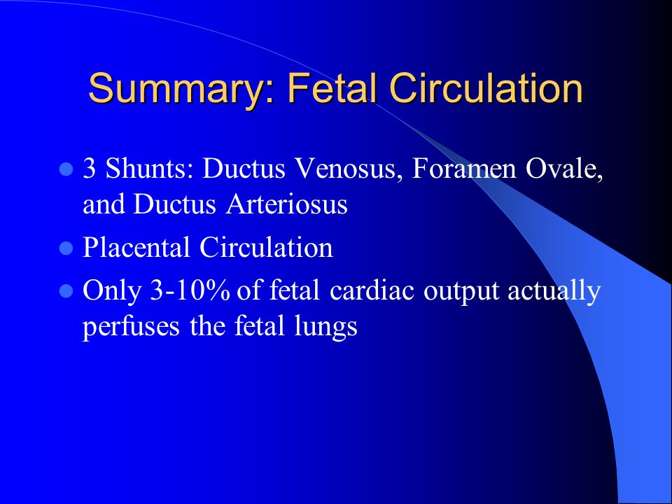 Summary: Fetal Circulation