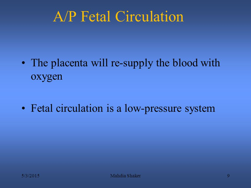 A/P Fetal Circulation The placenta will re-supply the blood with oxygen. Fetal circulation is a low-pressure system.