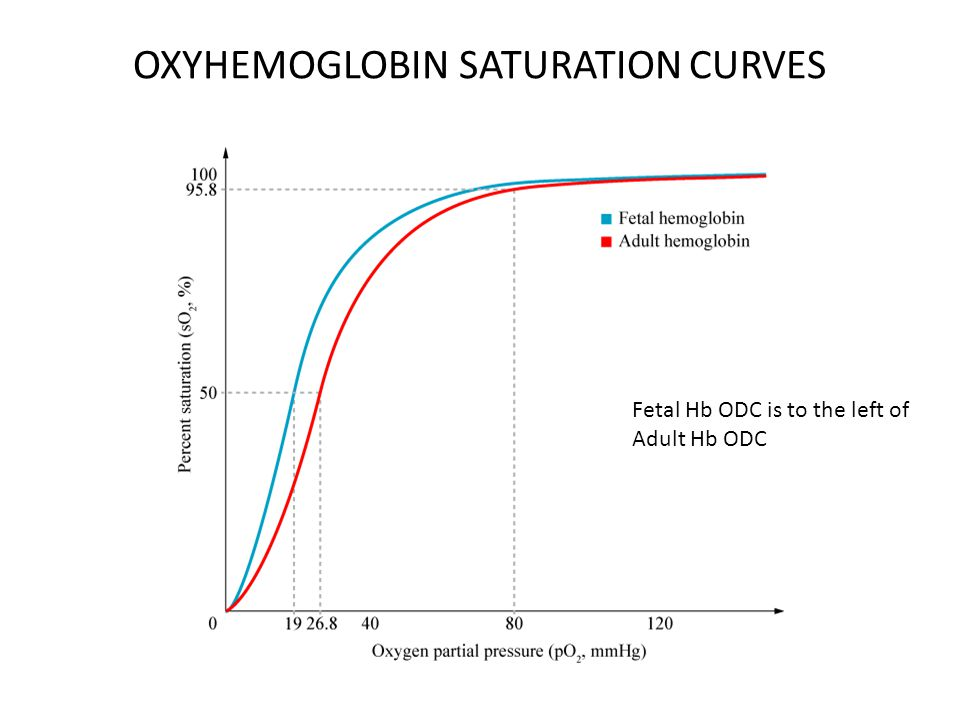 OXYHEMOGLOBIN SATURATION CURVES