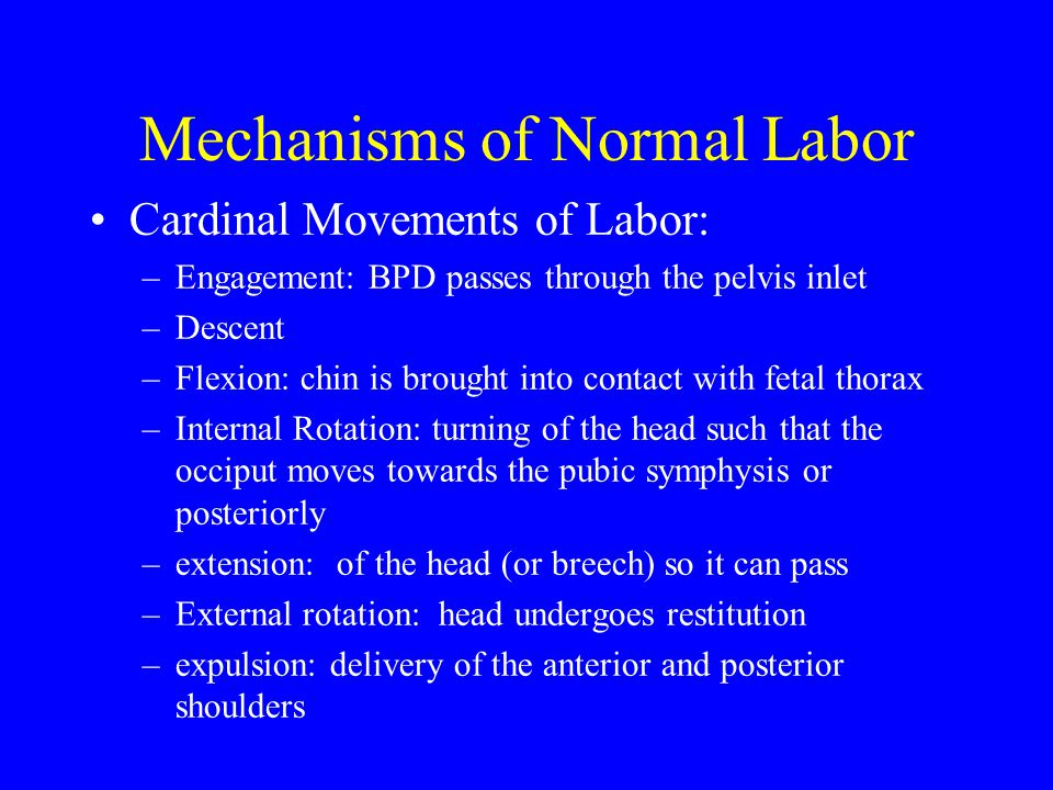 Mechanisms of Normal Labor